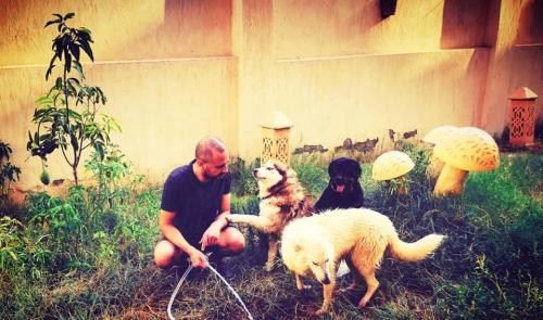 النفياوي مع الكلاب في الحديقة
