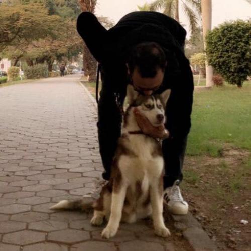 مصطفى النفياوي مع كلبه الخاص روي