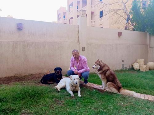 النفياوي مع كلابه على الارض ف الحديقة داخل منزله