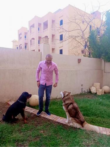 النفياوي مع كلابه ف الحديقة